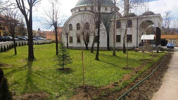 Hortikulturno uređenje harema Gradske džamije u Srebreniku