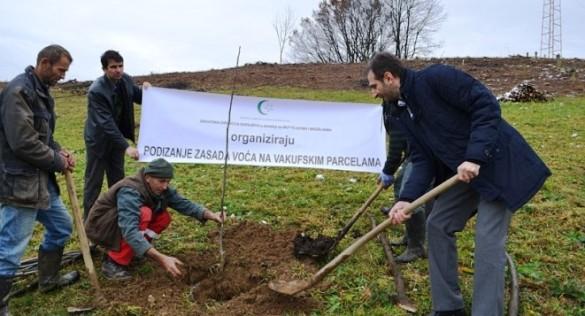 Vakufska direkcija: Nastavak projekta kultiviranja vakufskog zemljišta