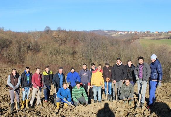 Mladi MIZ Zvornik u Šepku zasadili 500 sadnica šljive