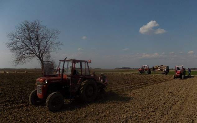 Janja: Na Dan vakifa zasijano 30 dunuma vakufske zemlje