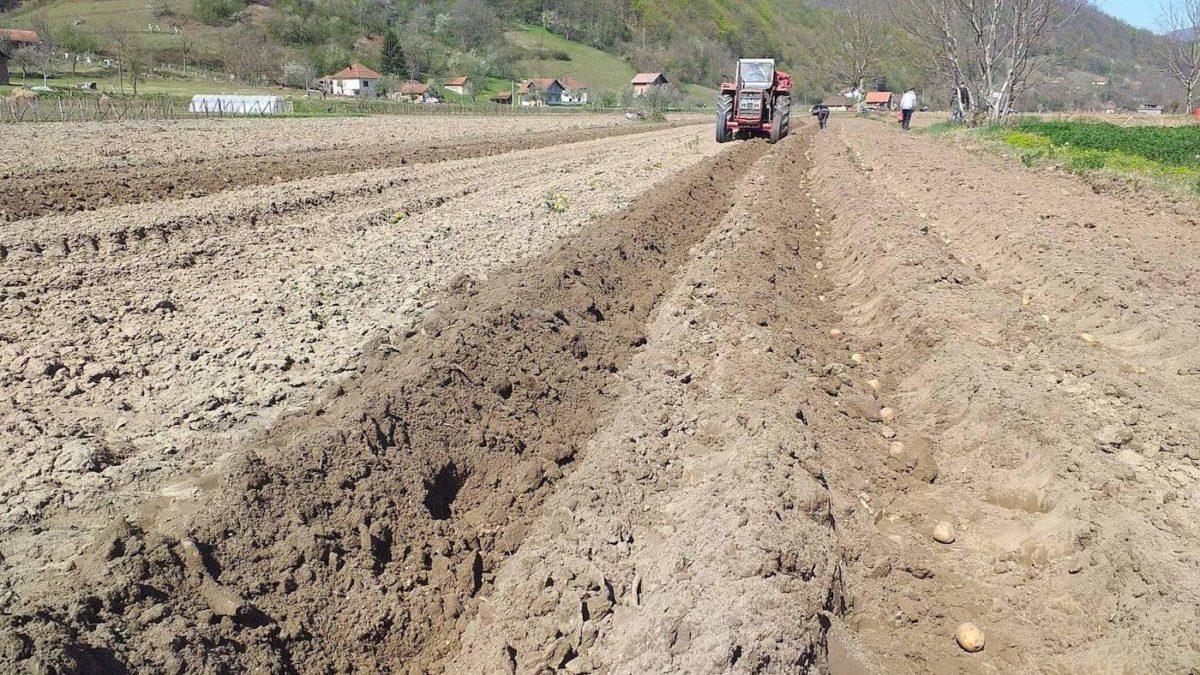 Medžlis Bratunac uspješno realizira proljetnu sjetvu