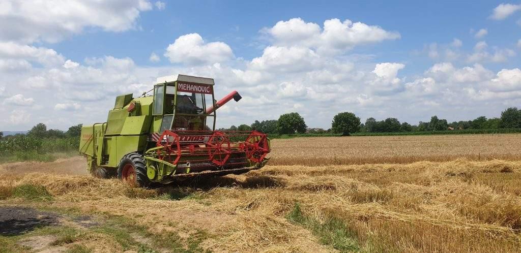 Janja: Završena žetva pšenice sa većine vakufskih parcela